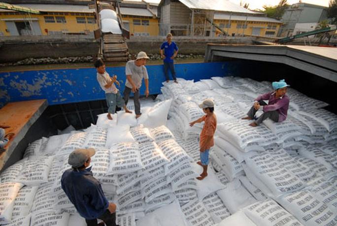 Tạm dừng xuất khẩu gạo dưới mọi hình thức từ ngày 24-3 - Ảnh 1.