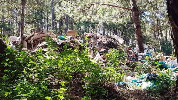 Chùm ảnh rác bủa vây Đà Lạt nhếch nhác, ô nhiễm - Ảnh 10.