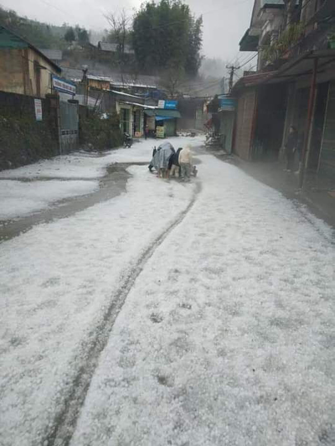 Mưa đá rơi trắng trời, trắng đất ở Lai Châu - Ảnh 8.