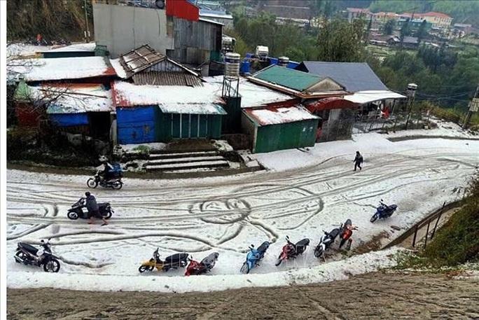 Mưa đá rơi trắng trời, trắng đất ở Lai Châu - Ảnh 1.