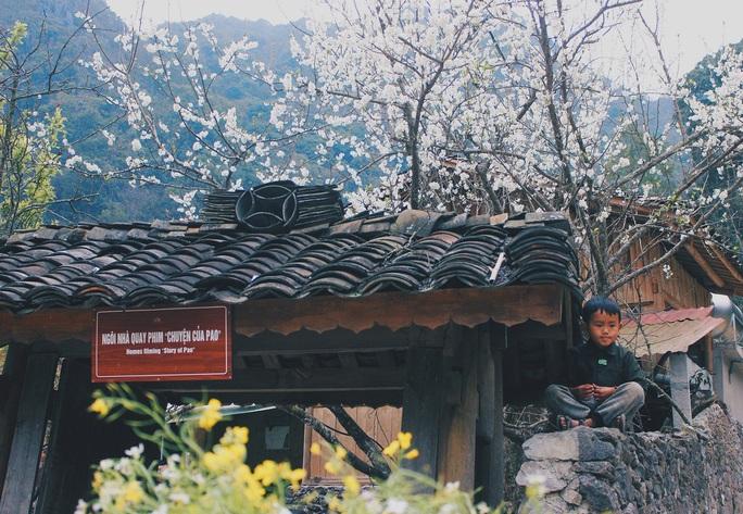 Du xuân Hà Giang, gieo mình giữa bạt ngàn hoa - Ảnh 11.