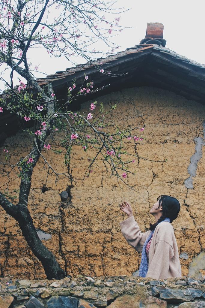 Du xuân Hà Giang, gieo mình giữa bạt ngàn hoa - Ảnh 9.