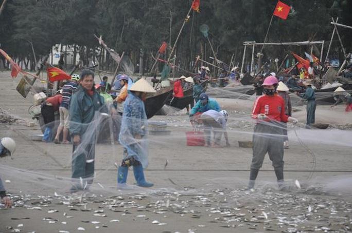 Nhiều người dậy thật sớm rủ nhau ra biển bắt hàng tấn cá trích - Ảnh 2.
