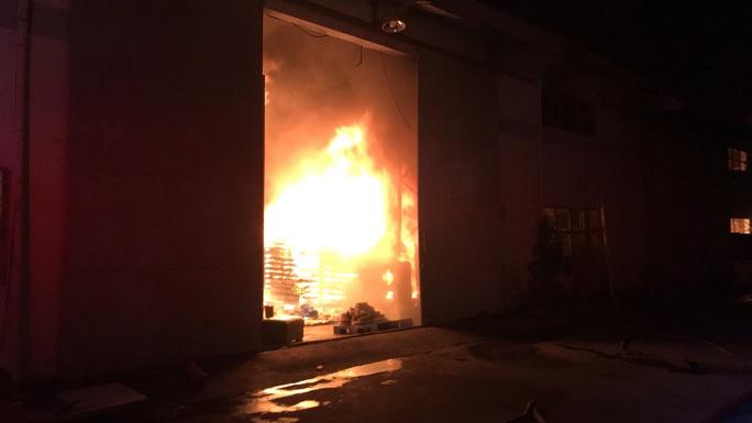 Cháy lớn trong KCN Cát Lái - Ảnh 1.