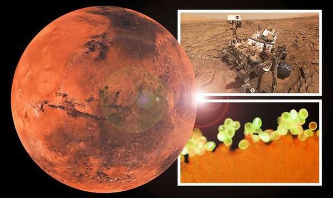 Phát hiện vật liệu sự sống của trái đất trên một hành tinh khác - Ảnh 1.