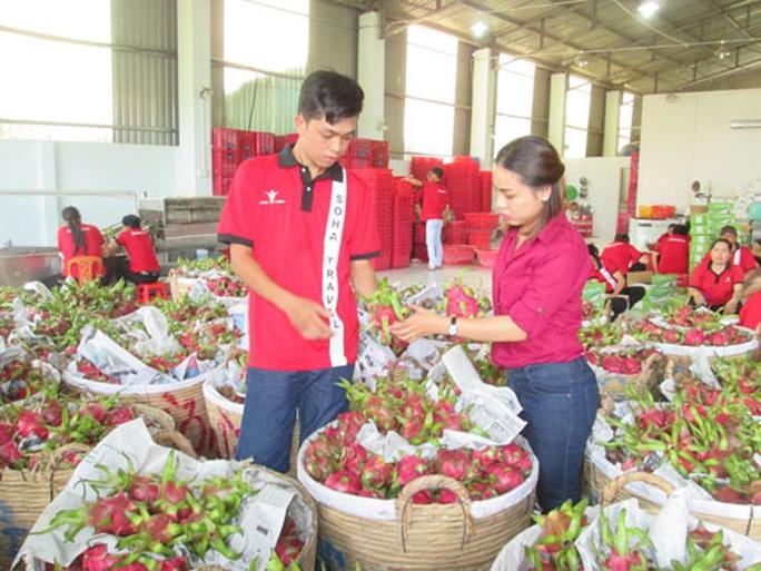 Quý I, nông sản xuất siêu 2,9 tỉ USD - Ảnh 1.
