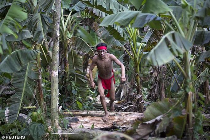 Thổ dân sống biệt lập trong rừng Amazon nhiễm Covid-19 tử vong - Ảnh 2.