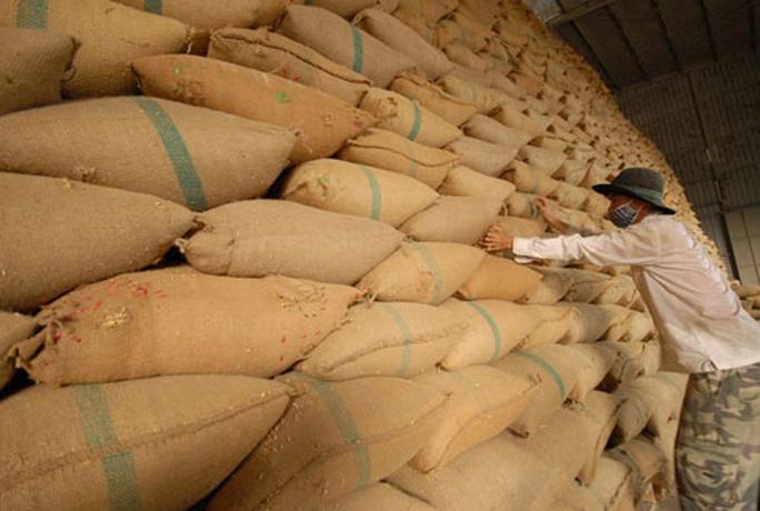 Hạn ngạch 400.000 tấn gạo, vừa mở đã hết - Ảnh 1.
