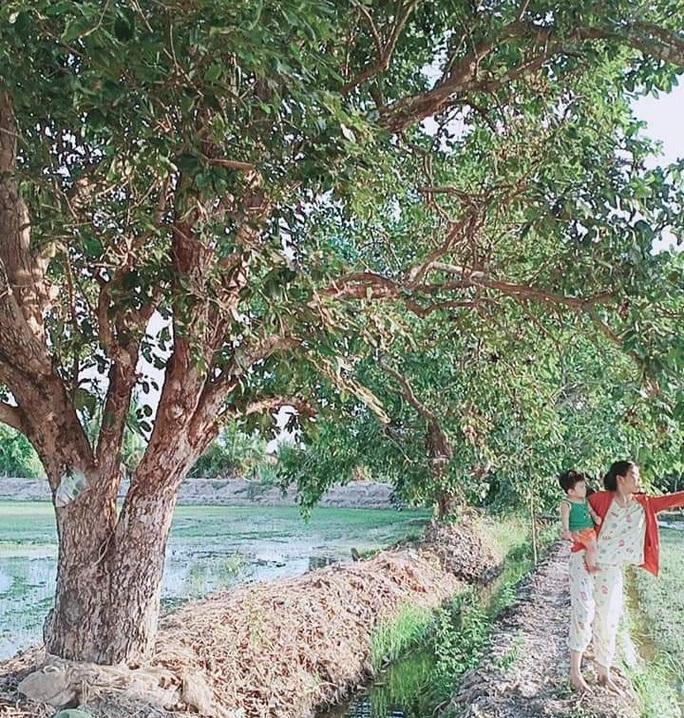 Về miền Tây thưởng thức trái rừng màu tím có vị ngọt xen lẫn chua, chát - Ảnh 2.