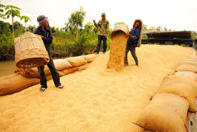 Khẩn trương giải tỏa gạo tại cảng - Ảnh 1.