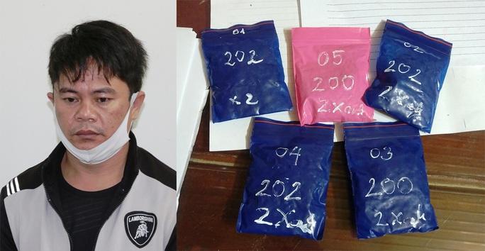 Quảng Bình: Bắt đối tượng ngụy trang 1.000 viên ma túy trong chậu cây cảnh - Ảnh 1.