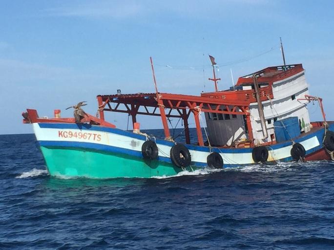 """Chi cục Thủy sản Cà Mau vén màn """"bí mật"""" bên trong 9 khoang của tàu cá - Ảnh 1."""