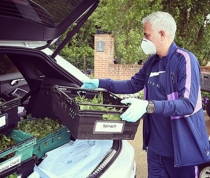 Thú vị hình ảnh người vận chuyển Mourinho giữa vườn rau - Ảnh 2.