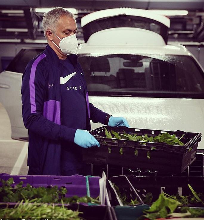 Thú vị hình ảnh người vận chuyển Mourinho giữa vườn rau - Ảnh 3.