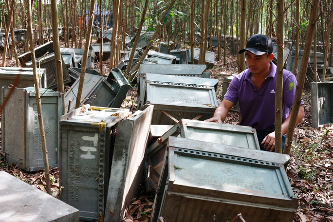 Đập phá trại nuôi ong vì sợ lây lan... dịch Covid-19 - Ảnh 1.