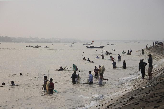 Đàn cá kình con vào sát kè biển Thuận An, nhiều người lao xuống vây bắt - Ảnh 1.