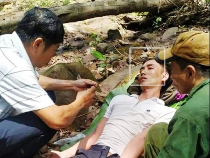 Quảng Bình: Cùng bố vợ vào rừng đốt ong lấy mật, con rể bị ong đốt nguy kịch - Ảnh 1.