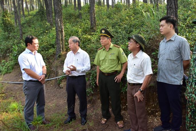 Miền Trung - Tây Nguyên: Nguy cơ cháy rừng rất cao - Ảnh 2.