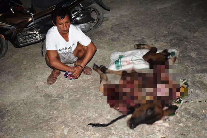 Quảng Bình: Túng tiền, thanh niên sang nhà hàng xóm bắt trộm bò xẻ thịt đem bán - Ảnh 1.