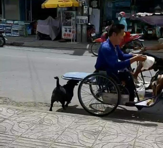 """CLIP: """"Rụng tim"""" với chú chó xoáy Phú Quốc thay chủ tật nguyền xếp hàng nhận gạo - Ảnh 6."""