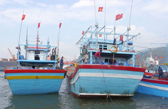 """""""Một triệu lá cờ Tổ quốc cùng ngư dân bám biển"""": Vươn khơi cùng cờ Tổ quốc - Ảnh 2."""