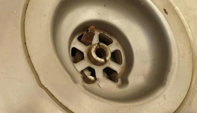 Đang rửa chén, người đàn ông thót tim vì rắn độc bò ra - Ảnh 1.