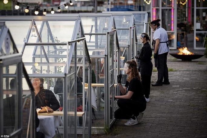 Cách tránh Covid-19 độc đáo của nhà hàng Hà Lan - Ảnh 7.