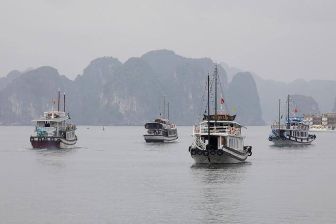 Việt Nam: Quốc gia chiến thắng hiếm hoi thời đại dịch - Ảnh 1.
