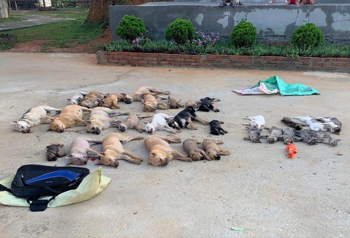 Cặp tình nhân dùng chất độc Xyanua trộm gần nửa tấn chó - Ảnh 1.