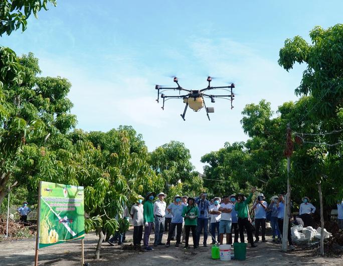 Người dân thích thú khi lần đầu tiên Khánh Hòa dùng máy bay phun phân bón - Ảnh 3.