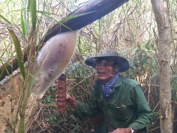 CLIP: Nghề gác kèo ong rừng U Minh Hạ đón nhận tin rất vui - Ảnh 2.