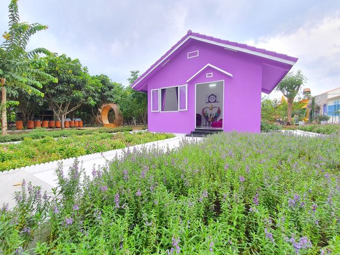 """CLIP: Căn nhà màu tím ở Cần Thơ """"đốn tim"""" du khách - Ảnh 3."""