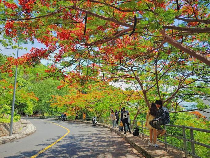 Giới trẻ Sài Gòn truyền tai nhau trải nghiệm con đường mùa hè đẹp nhất thành phố biển Vũng Tàu - Ảnh 1.