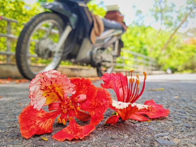 Giới trẻ Sài Gòn truyền tai nhau trải nghiệm con đường mùa hè đẹp nhất thành phố biển Vũng Tàu - Ảnh 5.