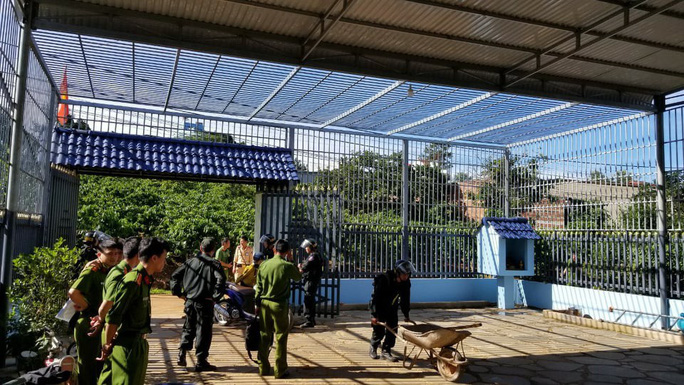 Đầu độc 10 ha rừng thông, trùm giang hồ và 6 bị can lãnh án tù - Ảnh 3.
