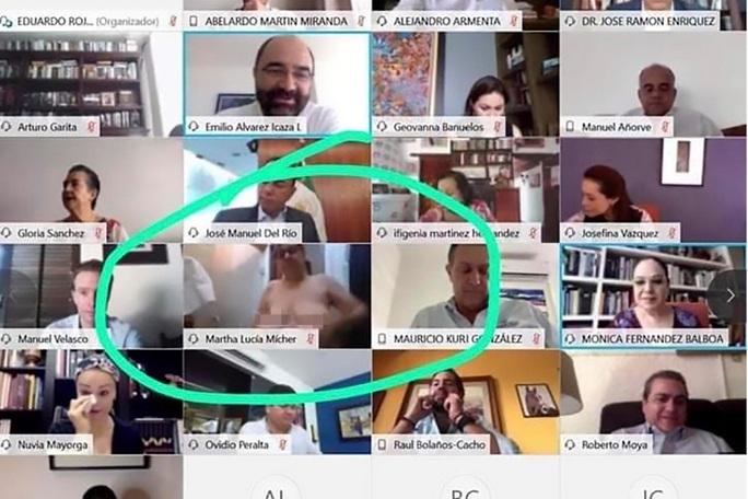 Nữ thượng nghị sĩ vô tình lộ ngực khi họp trực tuyến trên Zoom - Ảnh 2.