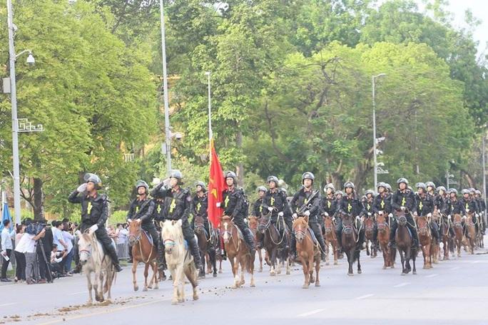 Đoàn Cảnh sát cơ động Kỵ binh: Giống ngựa kỵ binh sức khoẻ tốt, ngoại hình phù hợp - Ảnh 1.