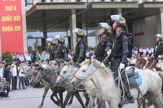 Đoàn Cảnh sát cơ động Kỵ binh: Giống ngựa kỵ binh sức khoẻ tốt, ngoại hình phù hợp - Ảnh 2.