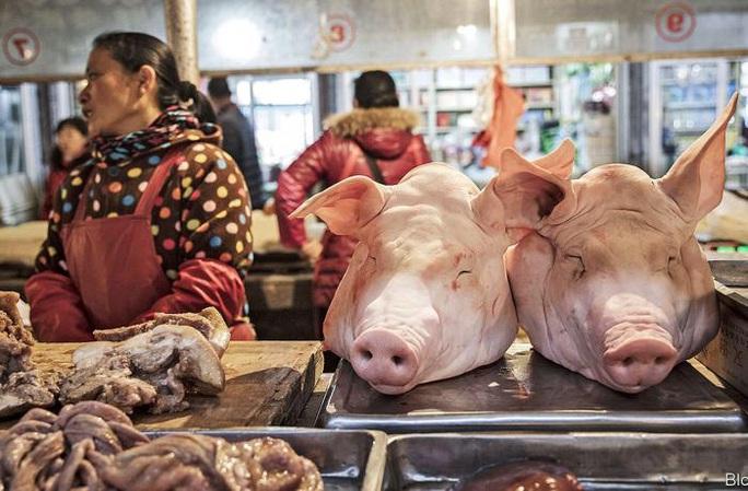 Virus mới ở Trung Quốc có đặc điểm của cúm heo 2009 và cúm đại dịch 1918 - Ảnh 2.