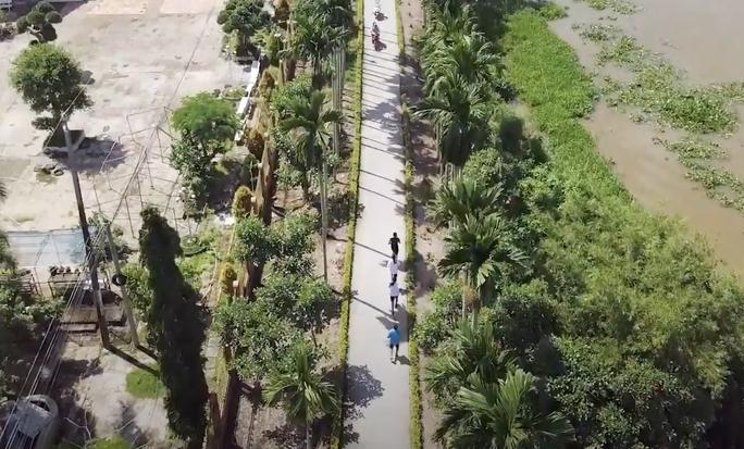 Hấp dẫn, thú vị đường chạy Mekong Delta Marathon 2020 - Ảnh 3.