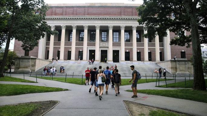 Mỹ hủy kế hoạch trục xuất du học sinh nước ngoài chỉ là tạm thời? - Ảnh 1.
