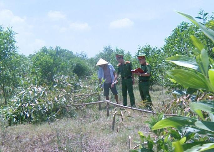 Hàng xóm không cho chăn thả bò, vác dao chặt phá hơn 700 cây keo để trả thù - Ảnh 2.