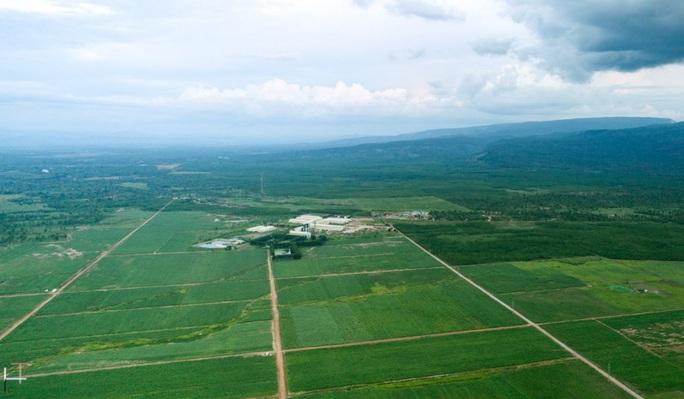 TTC Sugar tiếp tục mở rộng vùng nguyên liệu trồng mía organic tại Attapeu, Lào - Ảnh 2.