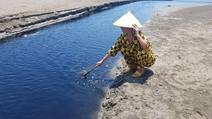 CLIP: Cảnh nước thải từ trang trại nuôi tôm biến bãi biển thơ mộng thành biển chết - Ảnh 12.