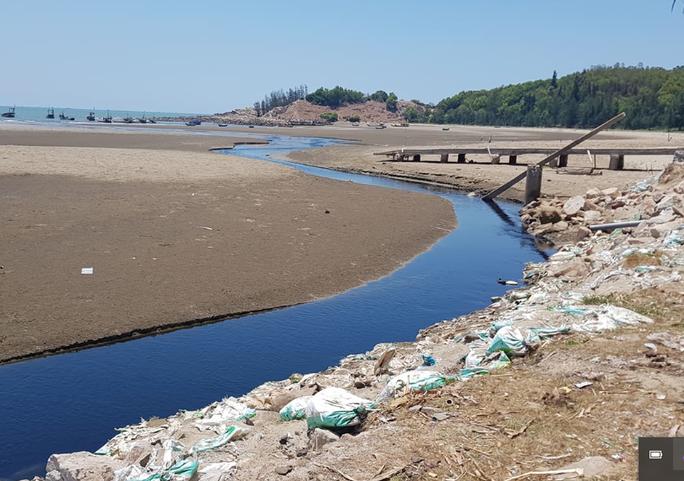 CLIP: Cảnh nước thải từ trang trại nuôi tôm biến bãi biển thơ mộng thành biển chết - Ảnh 14.