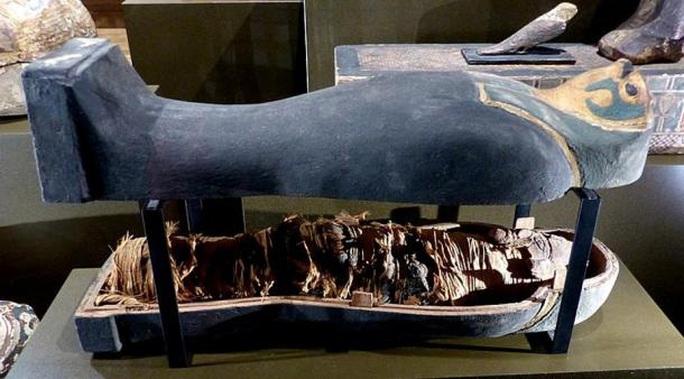 Quét CT xác ướp hoàng tử, sốc với hài cốt không phải người - Ảnh 1.