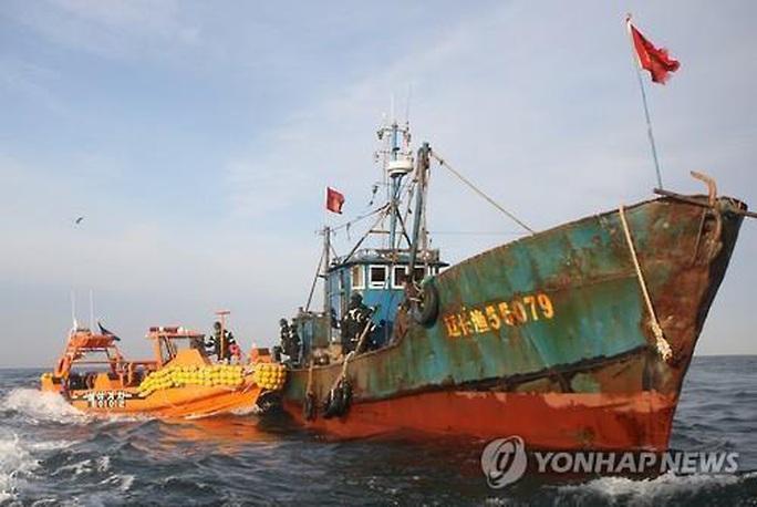 Hạm đội bóng tối Trung Quốc trên vùng biển Triều Tiên - Ảnh 1.