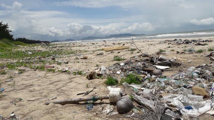 Bảo vệ môi trường biển: Phải hành động ngay! - Ảnh 1.