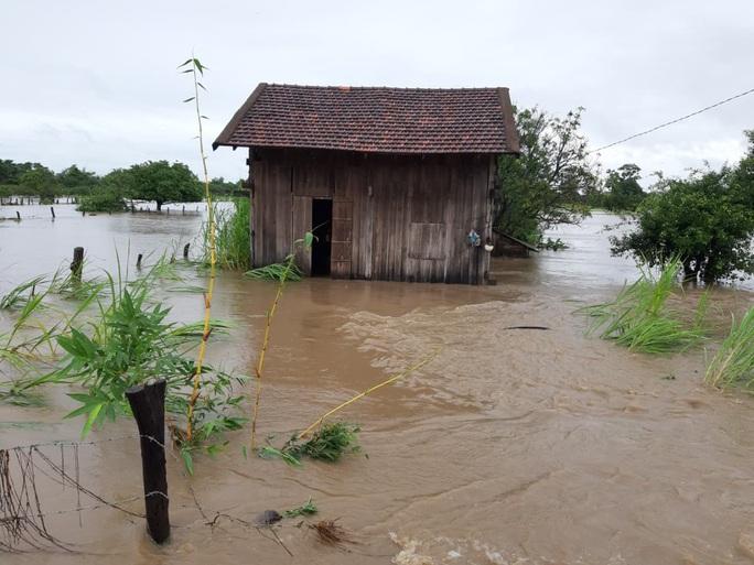 Mưa 1 trận, xóm làng Đắk Lắk chìm trong nước, hàng trăm ngôi nhà bị ngập - Ảnh 5.
