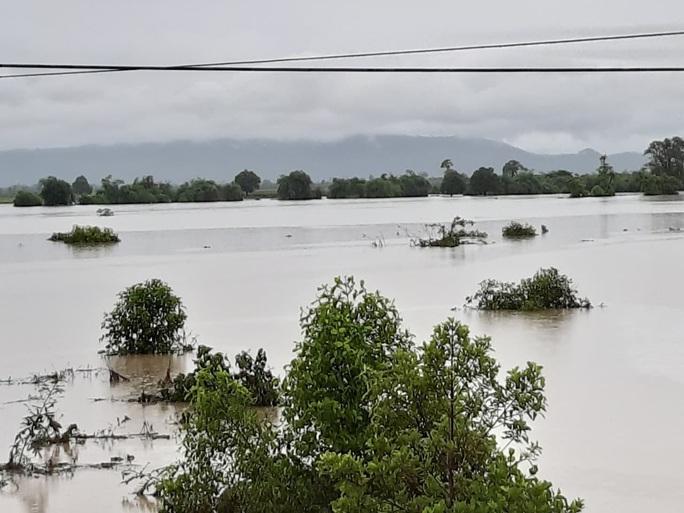 Mưa 1 trận, xóm làng Đắk Lắk chìm trong nước, hàng trăm ngôi nhà bị ngập - Ảnh 2.
